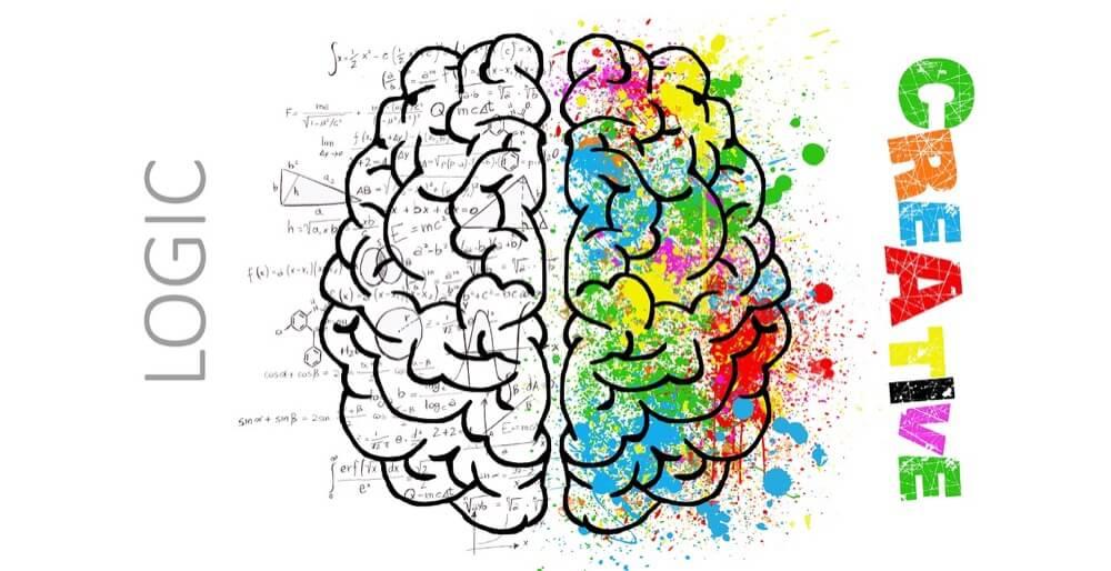 創造性と論理を持っている脳