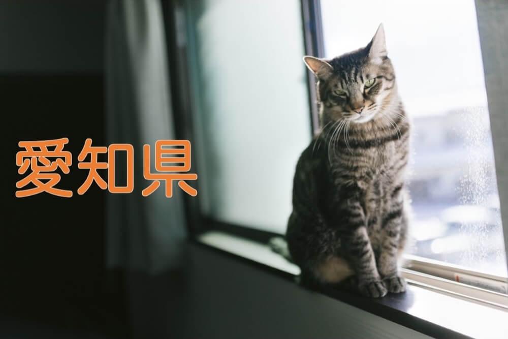 【愛知県】有機化学研究室のホームページリンク集
