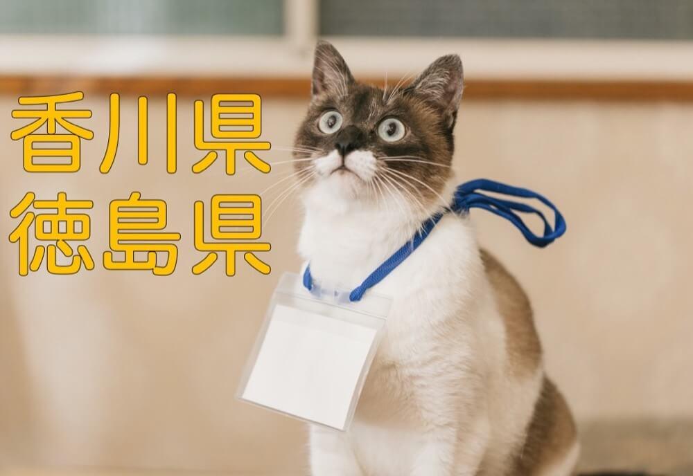 【香川県・徳島県】有機化学研究室のホームページリンク集