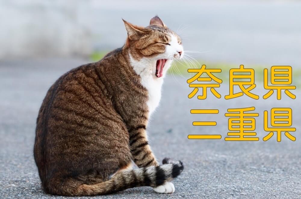 【奈良県・三重県】有機化学研究室のホームページリンク集