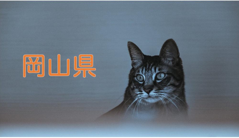 【岡山県】有機化学研究室のホームページリンク集