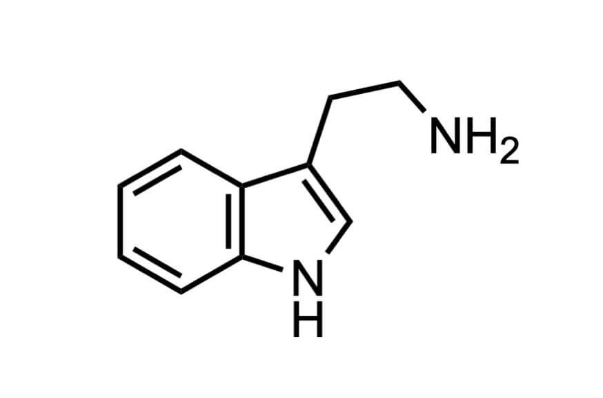 トリプタミンの構造式