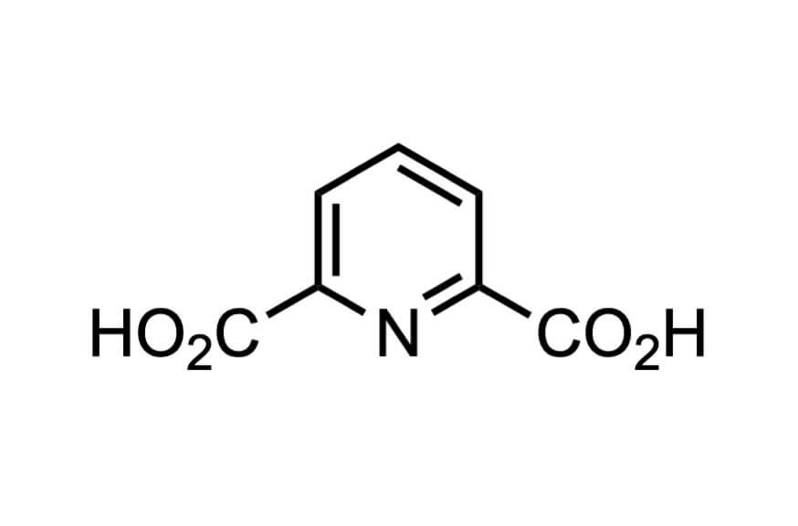 2,6-ピリジンジカルボン酸
