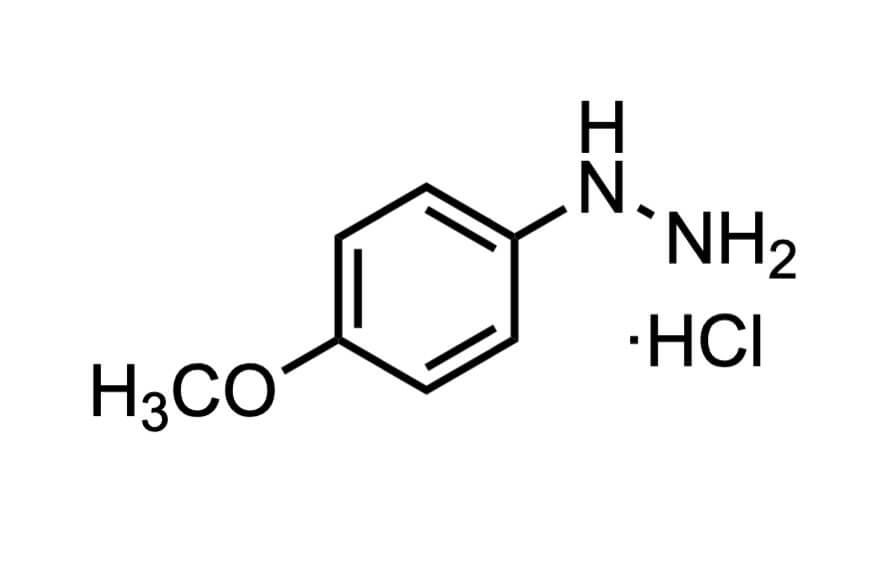 4-メトキシフェニルヒドラジン塩酸塩